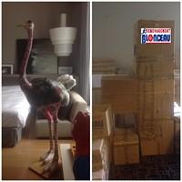 Emballage garde-meubles fragile stockage